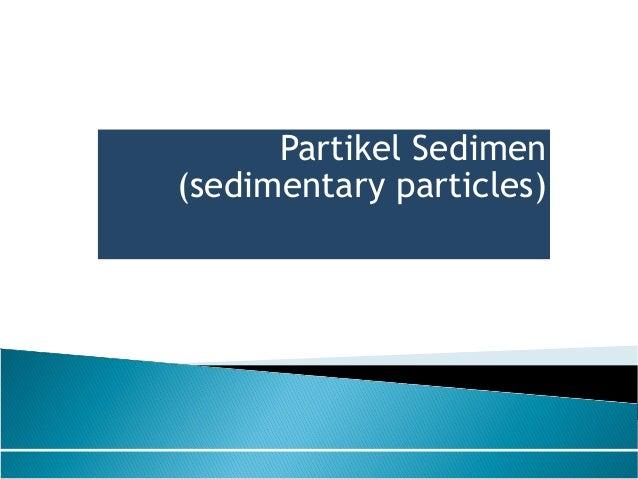 Partikel Sedimen (sedimentary particles)
