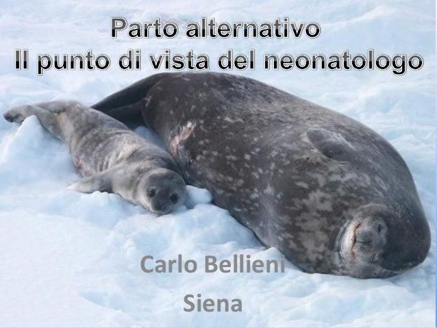 Carlo Bellieni Siena