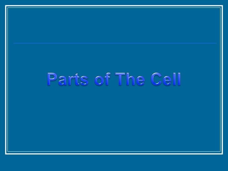 Three Major Parts of  the Cell:1. Plasma Membrane2. Cytoplasm3. Nucleus