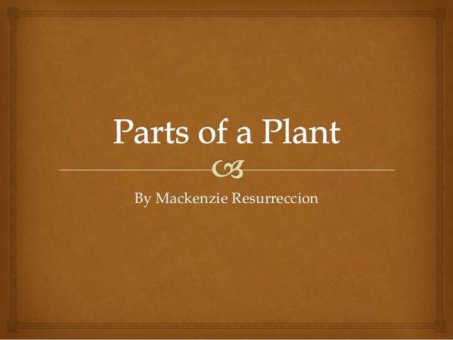 Parts of a Plant McKenzie