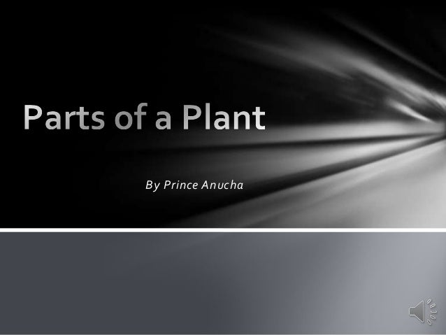 Parts of a plant Prince
