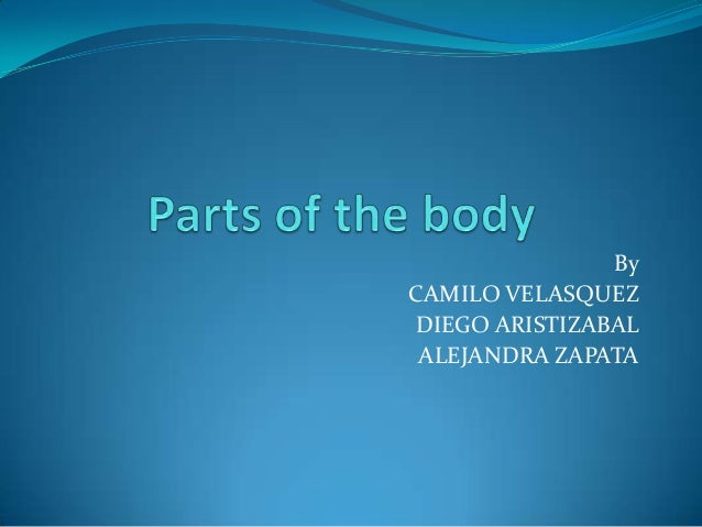 By CAMILO VELASQUEZ DIEGO ARISTIZABAL ALEJANDRA ZAPATA