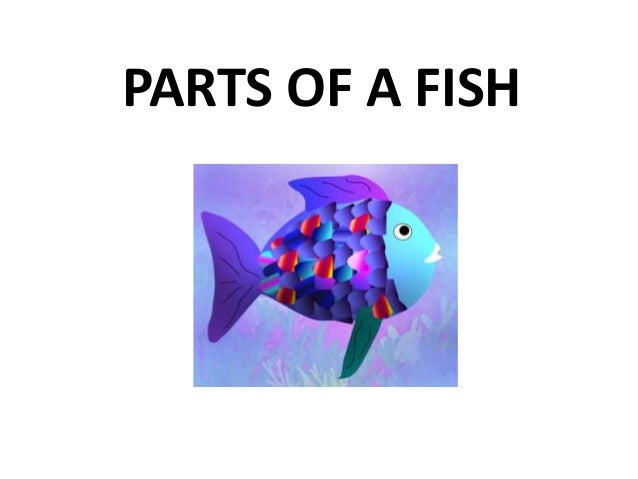 Parts of the fish