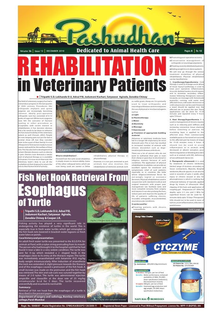 12     DECEMBER 2010                      Dedicated to Animal Health CareREHABILITATION                                   ...