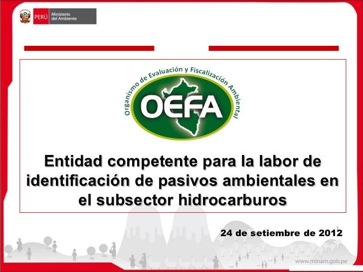 Entidad competente para la labor deidentificación de pasivos ambientales en        el subsector hidrocarburos             ...