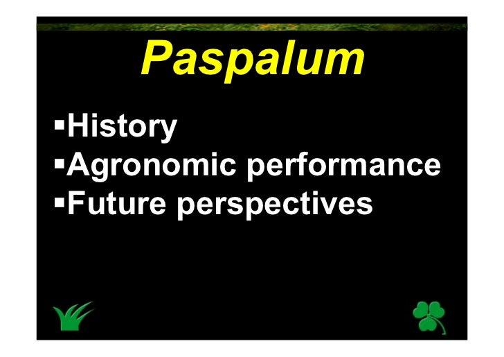 Paspalum History Agronomic performance Future perspectives