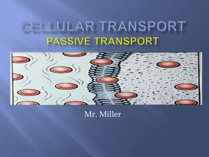 Cellular TransportPassive Transport<br />Mr. Miller<br />