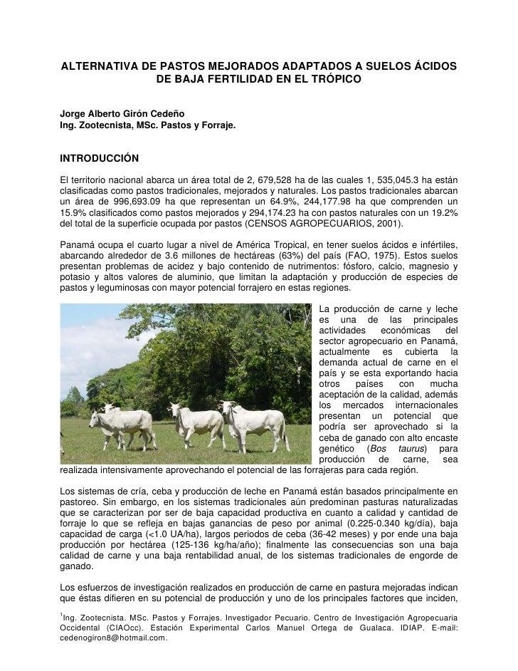 ALTERNATIVA DE PASTOS MEJORADOS ADAPTADOS A SUELOS ÁCIDOS               DE BAJA FERTILIDAD EN EL TRÓPICO   Jorge Alberto G...