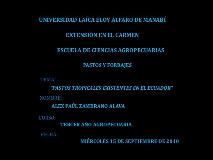 UNIVERSIDAD LAÍCA ELOY ALFARO DE MANABÍ<br />EXTENSIÓN EN EL CARMEN<br />ESCUELA DE CIENCIAS AGROPECUARIAS<br />PASTOS Y F...