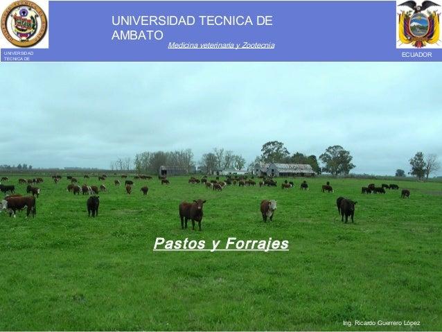 UNIVERSIDAD TECNICA DE AMBATO Medicina veterinaria y Zootecnia UNIVERSIDAD TECNICA DE AMBATO ECUADOR Pastos y Forrajes Ing...
