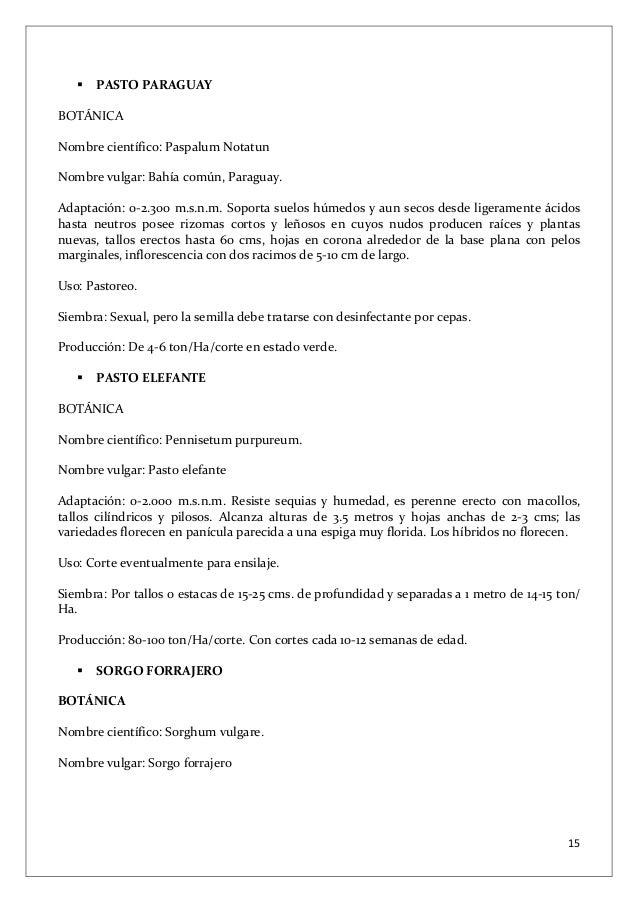 Pastos y forrajes for Lista de arboles perennes