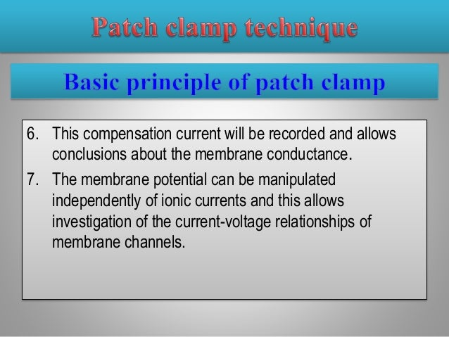 current voltage relationship patch clamp equipment