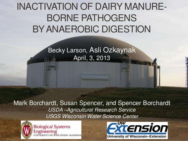 INACTIVATION OF DAIRY MANURE-BORNE PATHOGENSBYANAEROBIC DIGESTIONBecky Larson, Asli OzkaynakApril, 3, 2013Mark Borchardt, ...