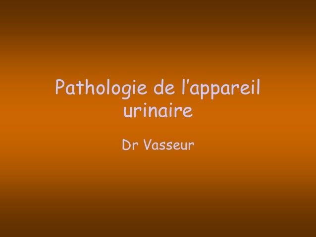 Pathologie de l'appareil urinaire Dr Vasseur