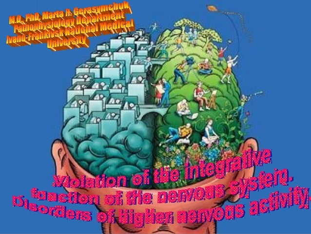 ActualityThe major functions of the nervous system are to detect,analyze, and transmit information. Information is gathere...