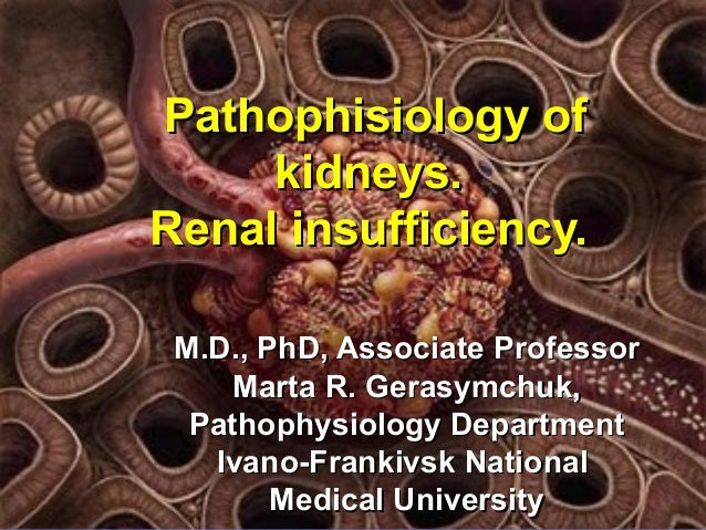 Pathophisiology ofPathophisiology of kidneys.kidneys. Renal insufficiency.Renal insufficiency. M.D., PhDM.D., PhD, Associa...