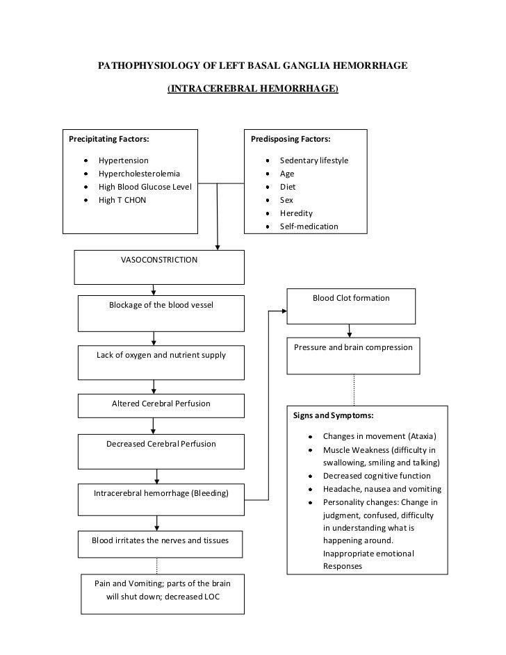 Pathophysiology of left basal ganglia hemorrhage