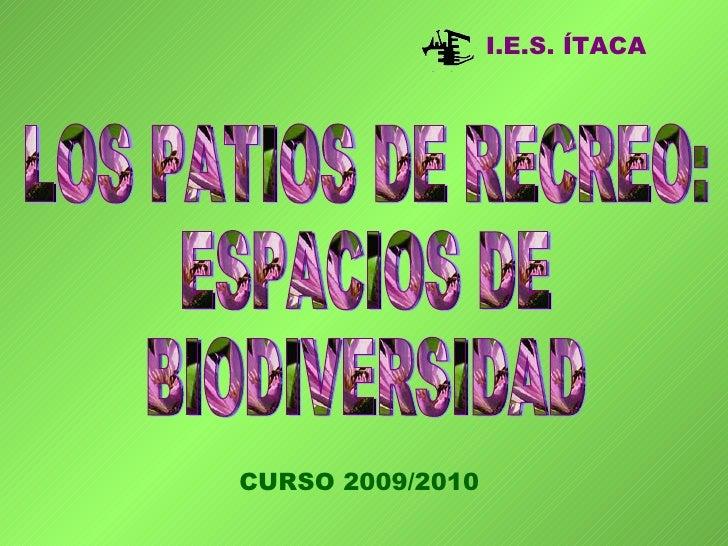 LOS PATIOS DE RECREO: ESPACIOS DE BIODIVERSIDAD I.E.S. ÍTACA CURSO 2009/2010