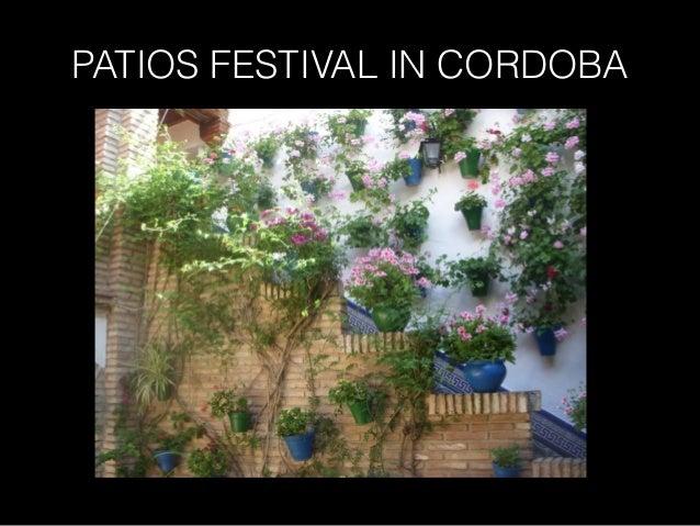 PATIOS FESTIVAL IN CORDOBA