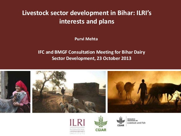 Livestock sector development in Bihar: ILRI's interests and plans Purvi Mehta  IFC and BMGF Consultation Meeting for Bihar...