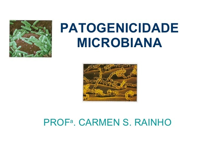 PATOGENICIDADE MICROBIANA PROF a . CARMEN S. RAINHO