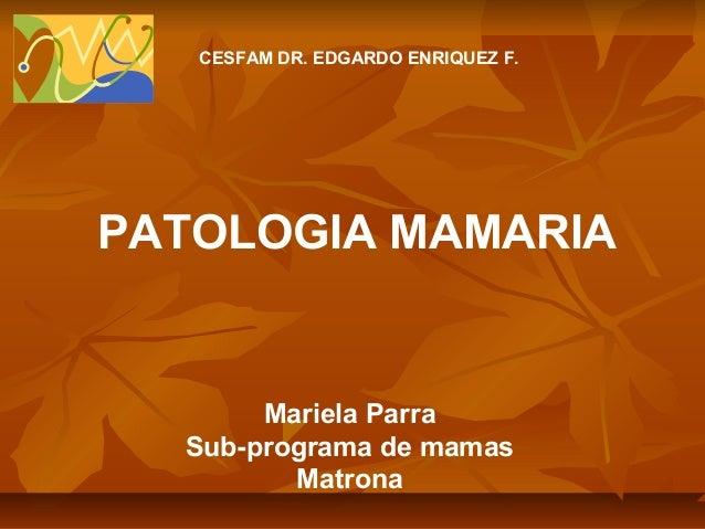 CESFAM DR. EDGARDO ENRIQUEZ F.  PATOLOGIA MAMARIA  Mariela Parra Sub-programa de mamas Matrona