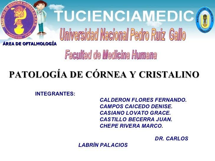 Universidad Nacional Pedro Ruiz  Gallo Facultad de Medicina Humana Á REA DE OFTALMOLOGÍA PATOLOGÍA DE CÓRNEA Y CRISTALINO ...