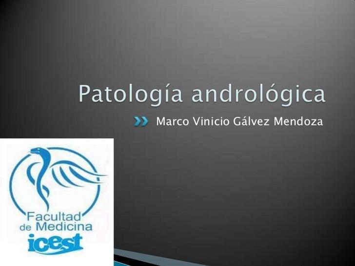 Patología andrológica