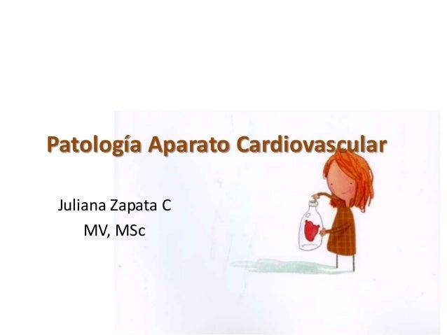 Patología aparato cardiovascular