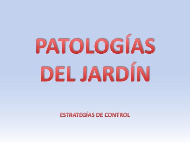 PRESENTACIÓN• Vamos a analizar la gestión de las patologías más  frecuentes en unas cuantas especies vegetales  residentes...
