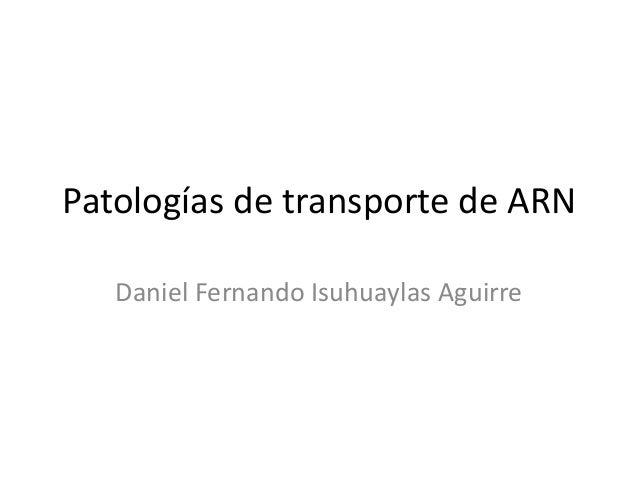 Patologías de transporte de ARN Daniel Fernando Isuhuaylas Aguirre