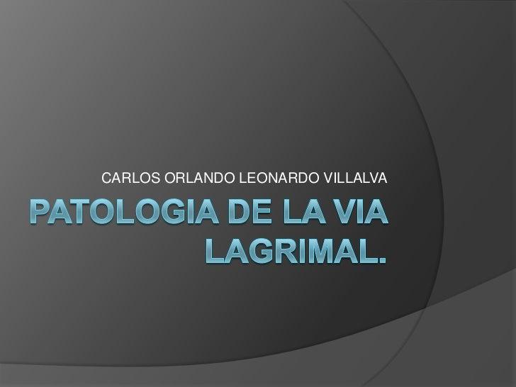 CARLOS ORLANDO LEONARDO VILLALVA