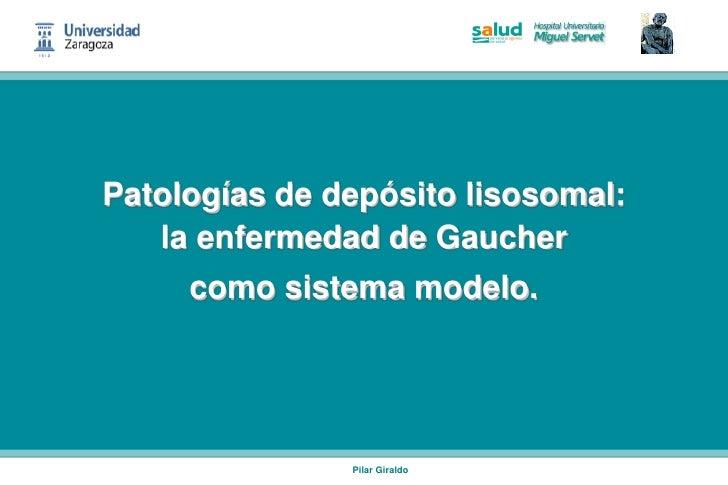 Patologías de depósito lisosomal:   la enfermedad de Gaucher     como sistema modelo.               Pilar Giraldo