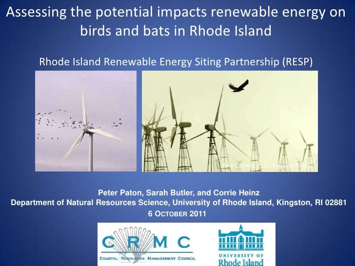 Assessing the potential impacts renewable energy on birds and bats in Rhode Island<br />Rhode Island Renewable Energy Siti...