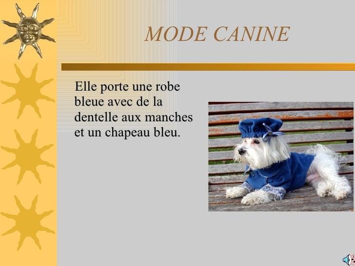MODE CANINE <ul><li>Elle porte une robe bleue avec de la dentelle aux manches  et un chapeau bleu.  </li></ul>