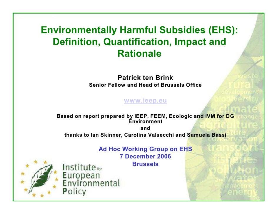 Patrick ten Brink Presentation on Environmental Harmful Subsidies EHS 7 September 2006