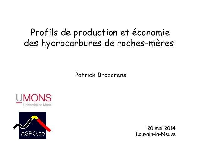 Profils de production et économie des hydrocarbures de roches-mères 20 mai 2014 Louvain-la-Neuve Patrick Brocorens
