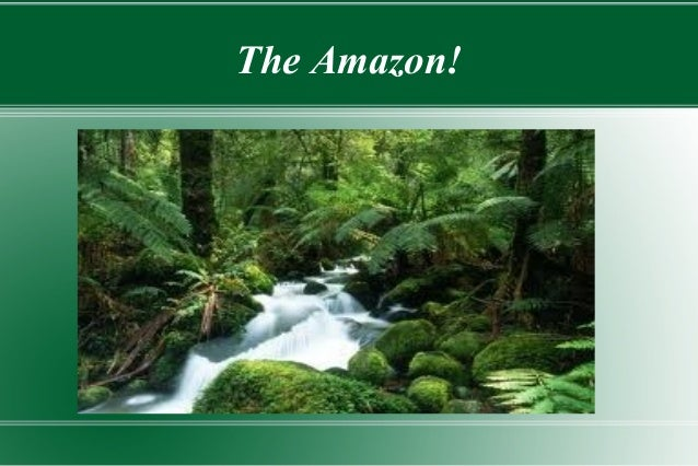 The Amazon!