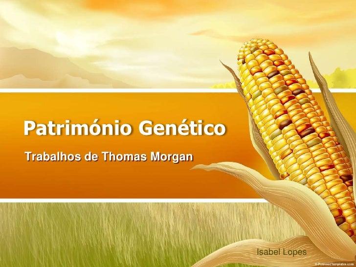 Património Genético Trabalhos de Thomas Morgan                                  Isabel Lopes