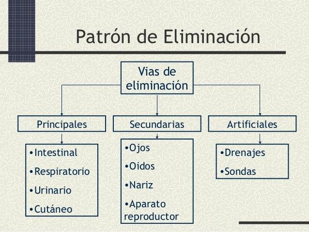 Patrón de Eliminación Vias de eliminación Principales  Secundarias  Artificiales  •Intestinal  •Ojos  •Drenajes  •Respirat...