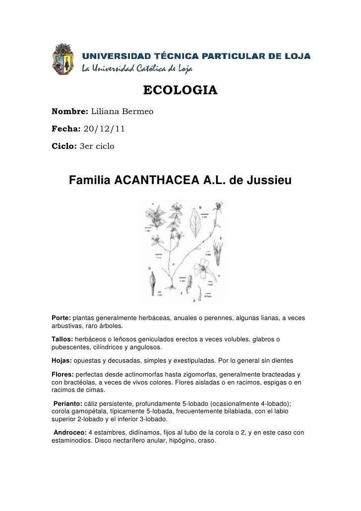 ECOLOGIANombre: Liliana BermeoFecha: 20/12/11Ciclo: 3er ciclo     Familia ACANTHACEA A.L. de JussieuPorte: plantas general...