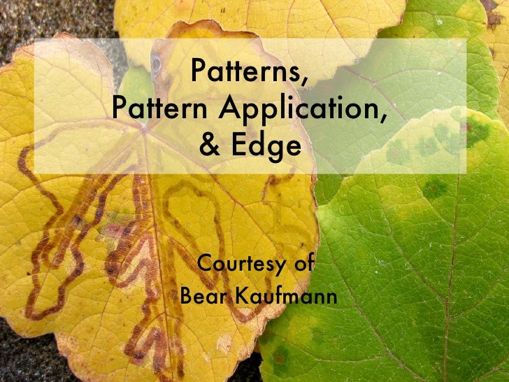 Patterns, Pattern Application, & Edge Courtesy of  Bear Kaufmann