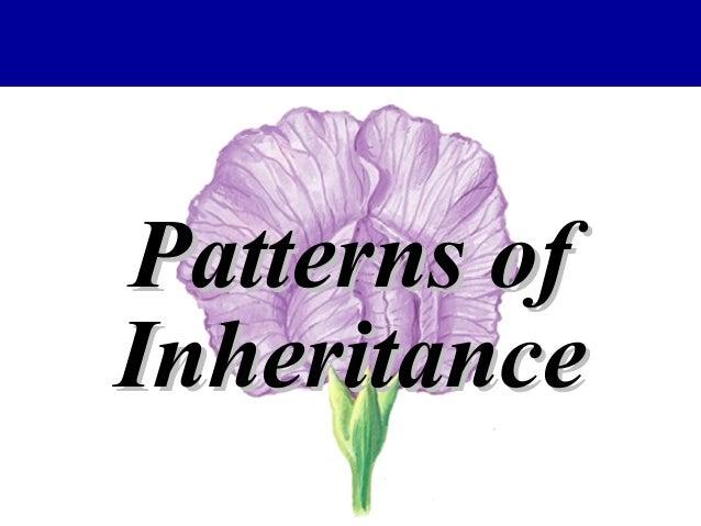 Patterns ofPatterns of InheritanceInheritance