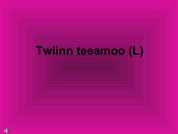 Twiinn teeamoo (L)