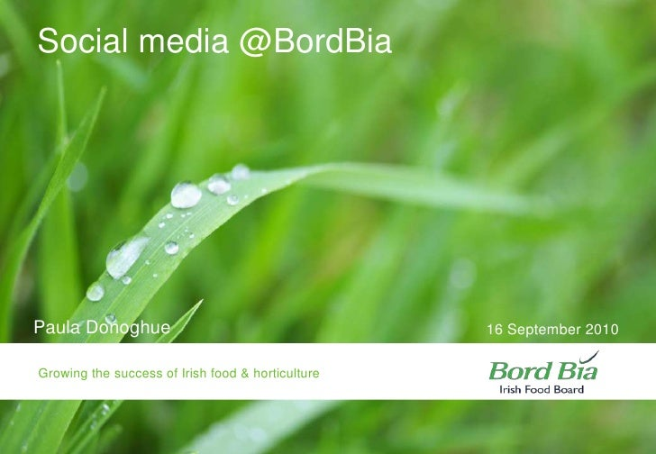 Paula Donoghue<br />16 September 2010 <br />Social media @BordBia<br />