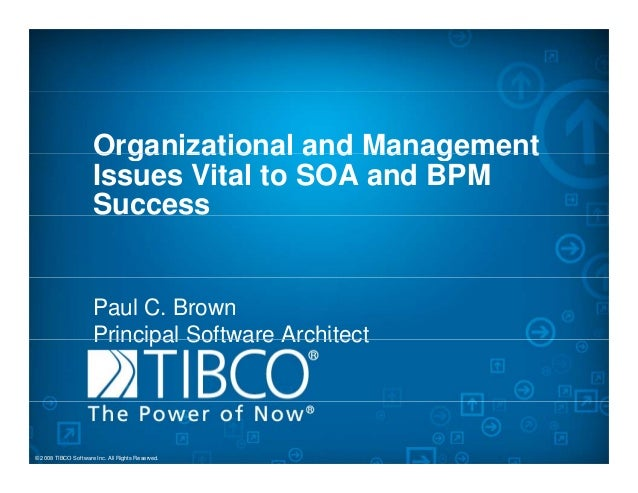 Organizational and ManagementOrganizational and Management Issues Vital to SOA and BPM Success Paul C. Brown Principal Sof...