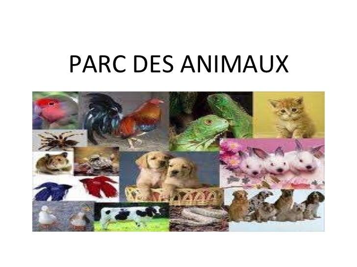 PARC DES ANIMAUX