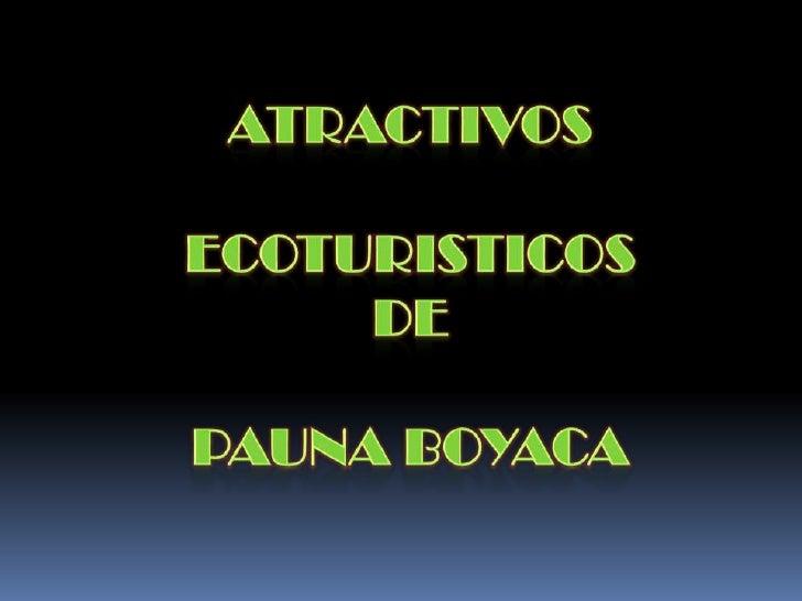 ATRACTIVOS <br />ECOTURISTICOS <br />DE <br />PAUNA BOYACA<br />