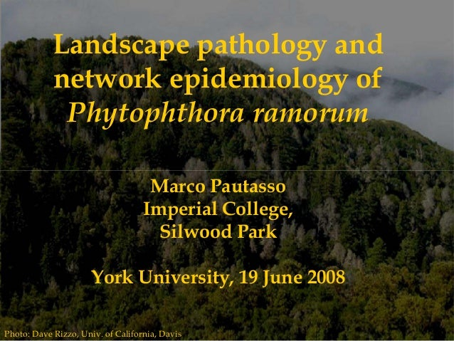 Photo: Dave Rizzo, Univ. of California, Davis Landscape pathology and network epidemiology of Phytophthora ramorum Marco P...