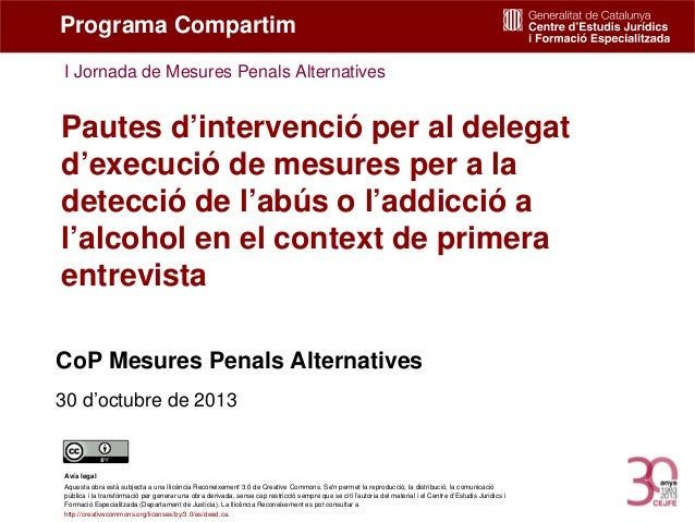 Pautes d'invervenció per al delegat d'excució de mesures.